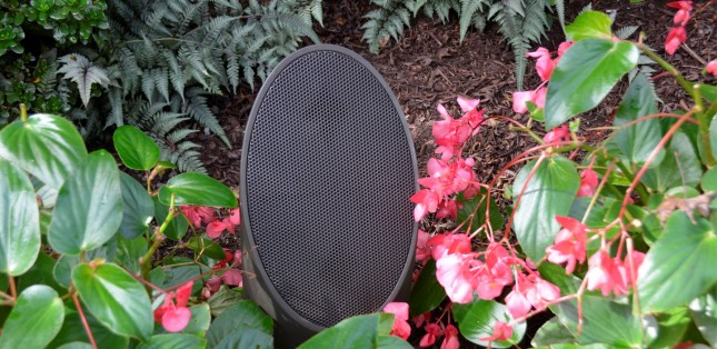 Conscape Creates the Finest Outdoor Audio Experience