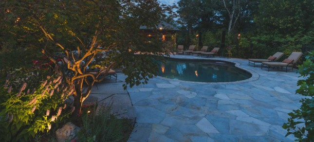Hosting a Backyard Summer Party with Conscape Lighting